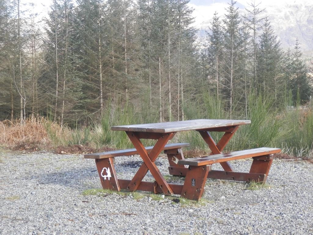 Fearnoch Forest-Oban-What To Do-Attractions-Scotland