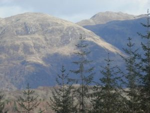 Fearnoch Forest,Views-Oban-What To Do-Attractions-Scotland