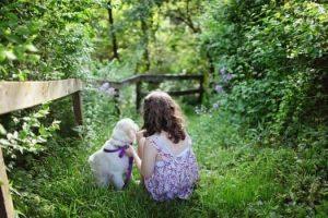 Highland Animal Reiki-Oban,Children And Friends-Shops And Services-Services-Scotland
