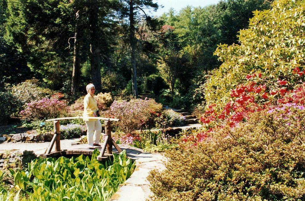 Arduaine Garden-Arduaine-Oban-What To Do-Attractions-Scotland