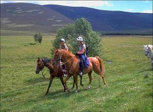 Achnalarig Riding Stables,Riding-Oban-What To Do-Activities-Scotland