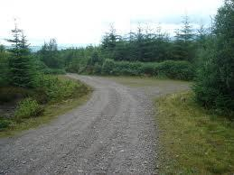 Fearnoch Forest,Trails-Oban-What To Do-Attractions-Scotland