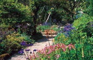 Arduaine Gardens-Arduaine-Oban-What To Do-Attractions-Scotland