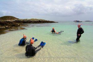 Basking Shark Scotland,Tours-Oban-What To Do-The Sea-Scotland