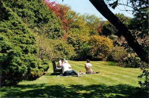 Arduaine Gardens-What To Do-Attractions-Oban-Scotland