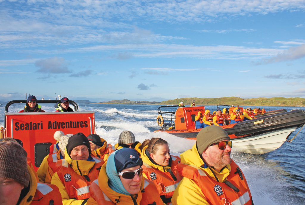 Seafari Adventures, What to Do, activities, Oban, Scotland